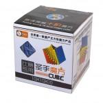 ShengShou 10x10x10 ambalat